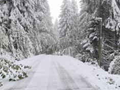 Snehová kalamita Polianky 15.10.2020